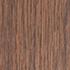 haogenplask birch tree - haogenplask-birch-tree