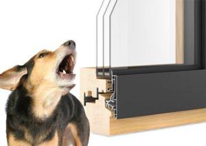 barking dog window 300x213 - triple glazed noise reduction
